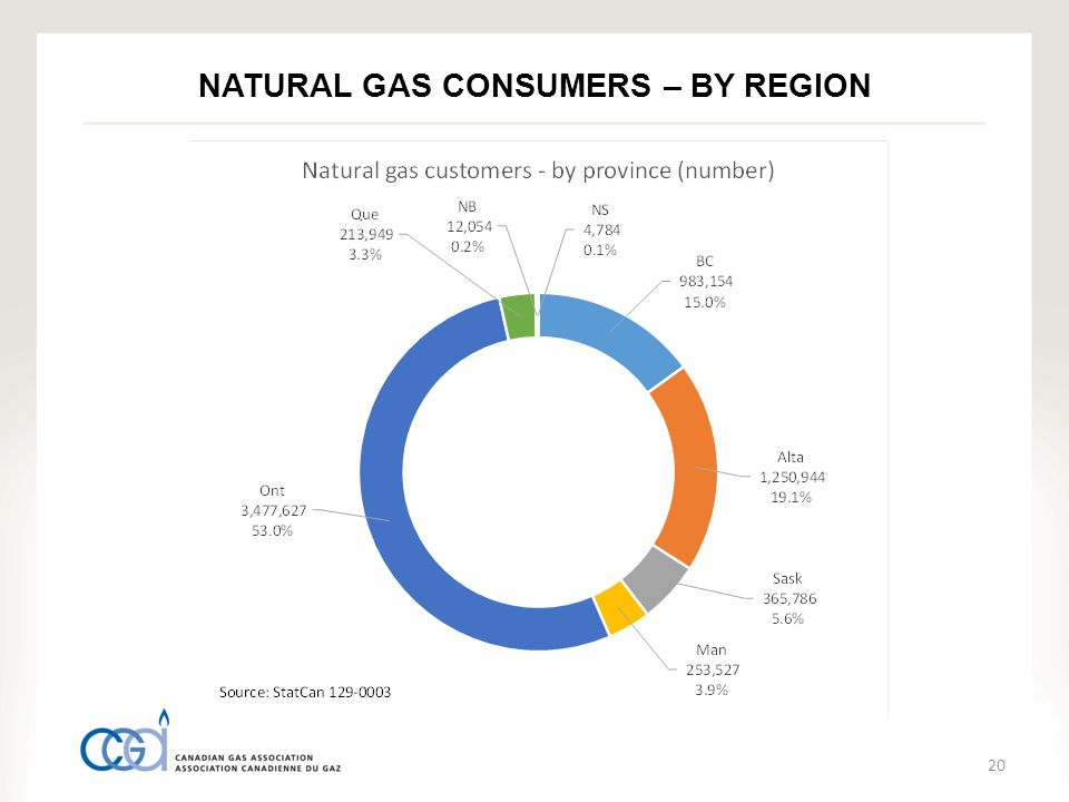 20 NATURAL GAS CONSUMERS – BY REGION
