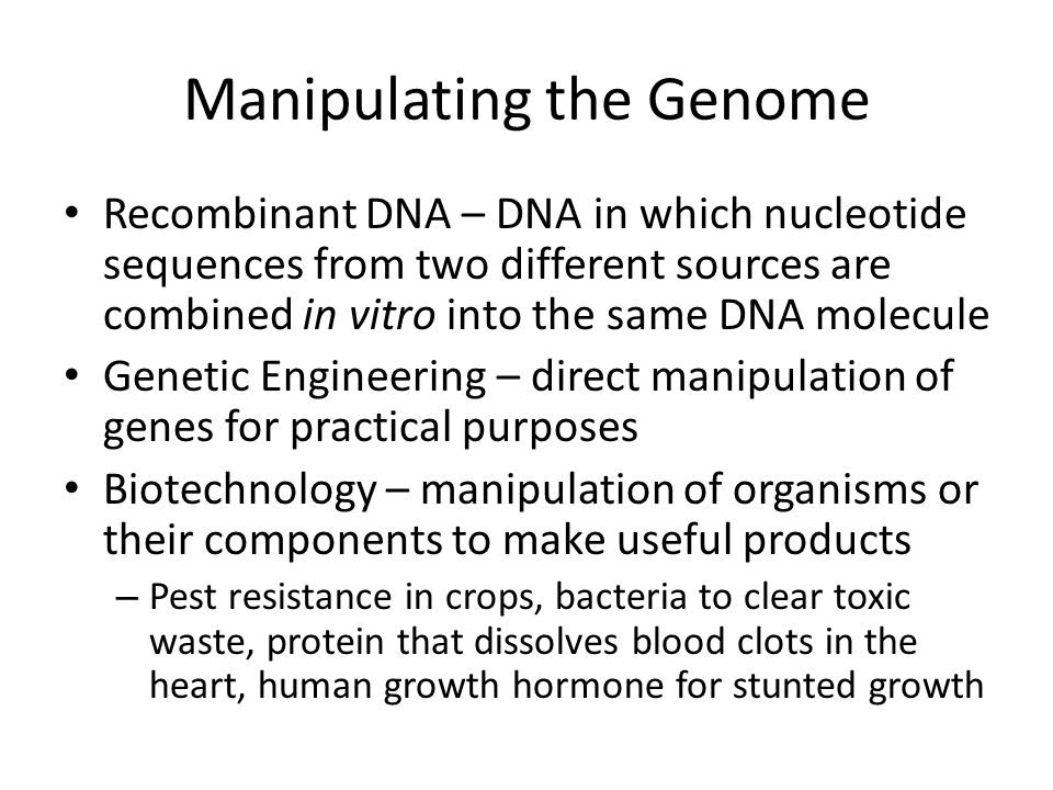 Manipulating the Genome Recombinant DNA – DNA in which nucleotide sequences from two different sources are combined in vitro into the same DNA molecule Genetic Engineering – direct manipulation of genes for practical purposes Biotechnology – manipulation of organisms or their components to make useful products – Pest resistance in crops, bacteria to clear toxic waste, protein that dissolves blood clots in the heart, human growth hormone for stunted growth