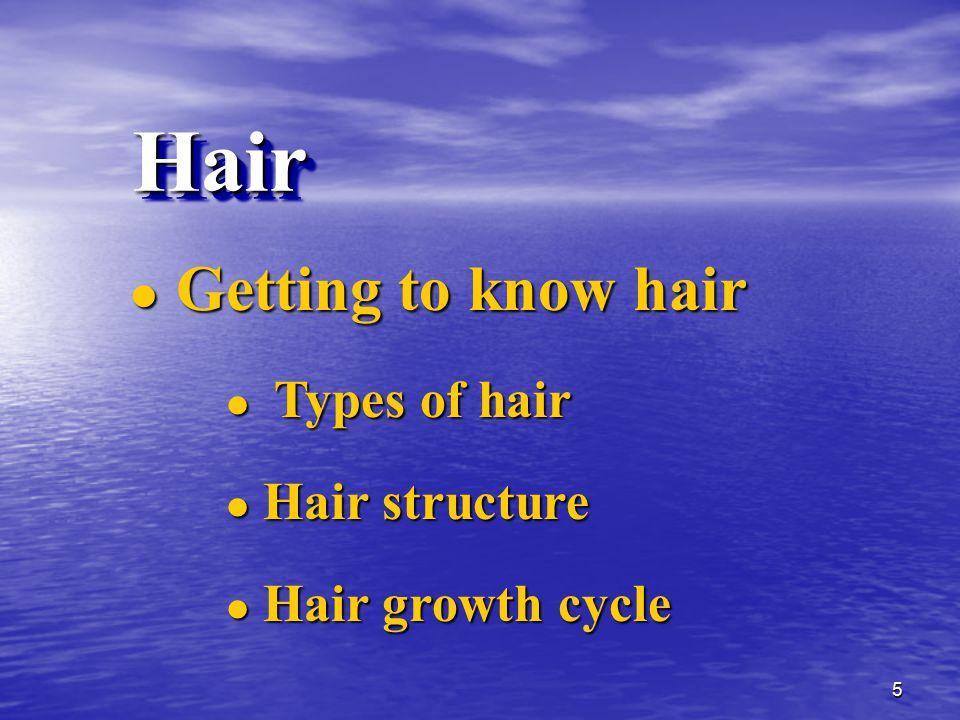 vorbereitungen für das haarwachstum anregen bürsten.jpg