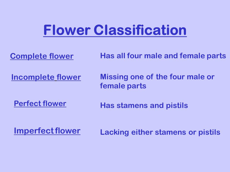 Flower Classification Complete flower Has all four male and female parts Incomplete flower Missing one of the four male or female parts Perfect flower Has stamens and pistils Imperfect flower Lacking either stamens or pistils