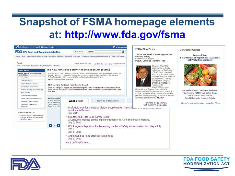Snapshot of FSMA homepage elements at: