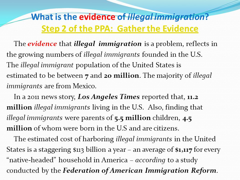 What are some illegal immigration problems?
