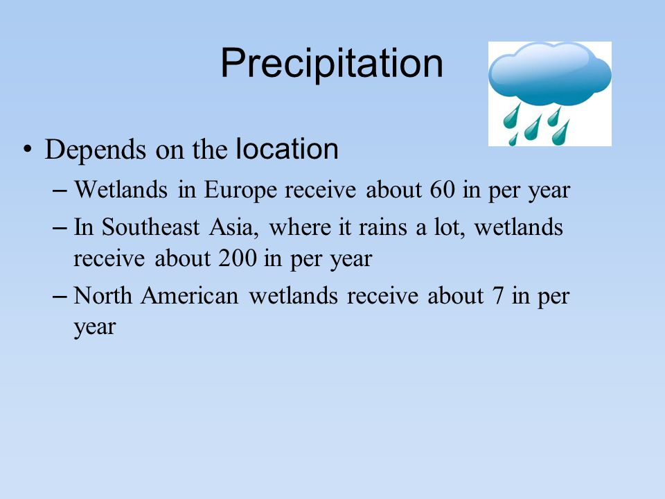 Precipitation Depends on the location – Wetlands in Europe receive about 60 in per year – In Southeast Asia, where it rains a lot, wetlands receive about 200 in per year – North American wetlands receive about 7 in per year