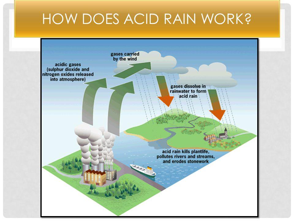 Acid Rain In Germany - Lessons - Tes Teach