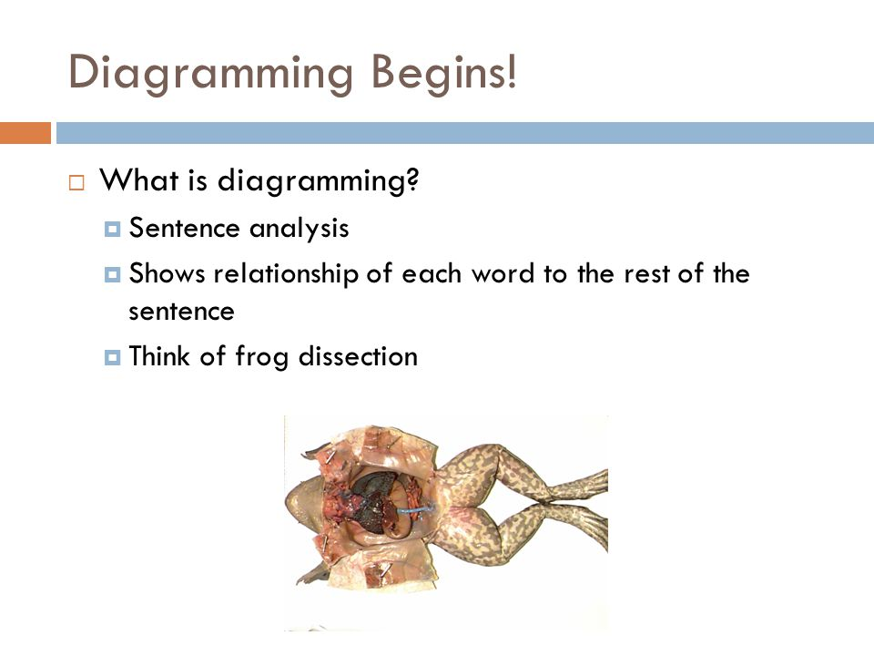 diagramming begins   what is diagramming   sentence analysis    what is diagramming   sentence analysis  shows relationship of each