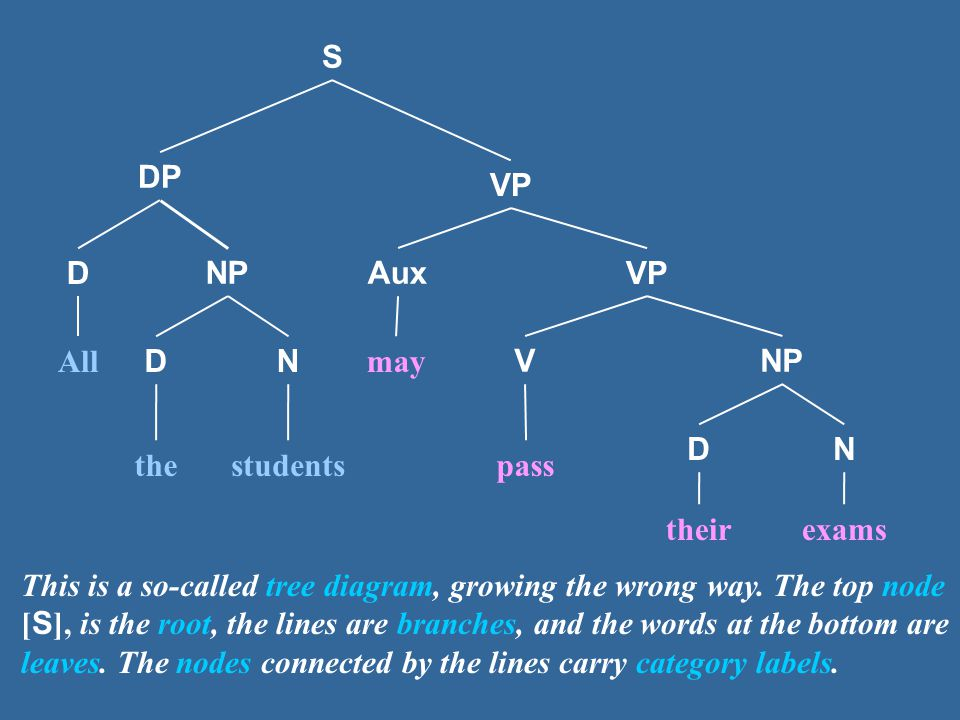 S VP Aux VNP D may pass DN theirexams NP DN All thestudents This is a so-called tree diagram, growing the wrong way.