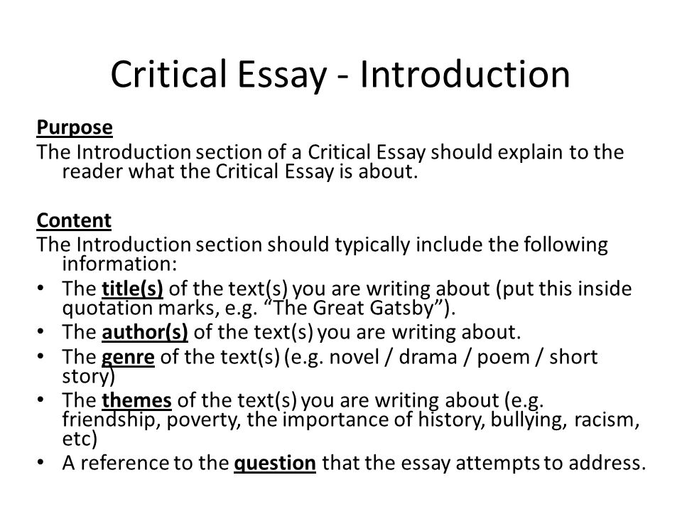 explain the essay