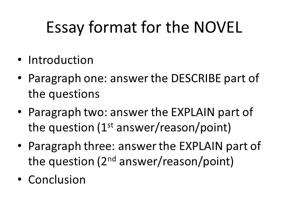 answer essay