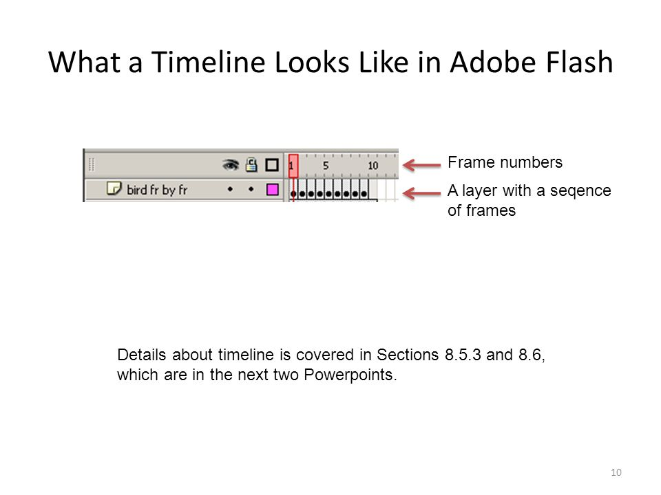 What a Timeline Looks Like in Adobe Flash 10 Frame numbers A layer with a seqence of frames Details about timeline is covered in Sections and 8.6, which are in the next two Powerpoints.
