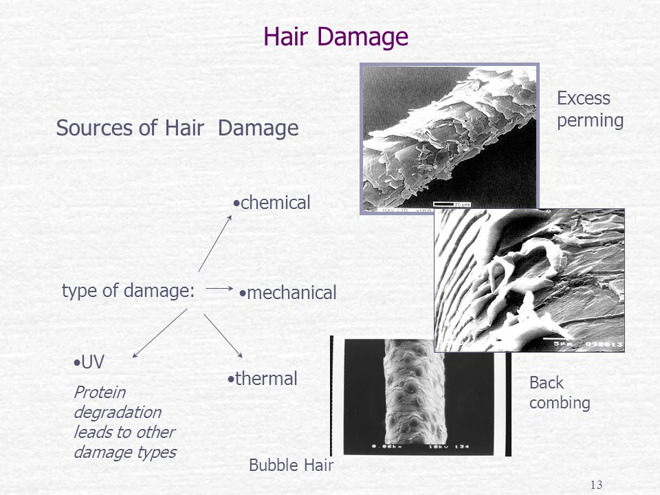 mechanical type of damage: chemical thermal Sources of Hair Damage Excess perming Back combing Bubble Hair Hair Damage UV Protein degradation leads to other damage types 13