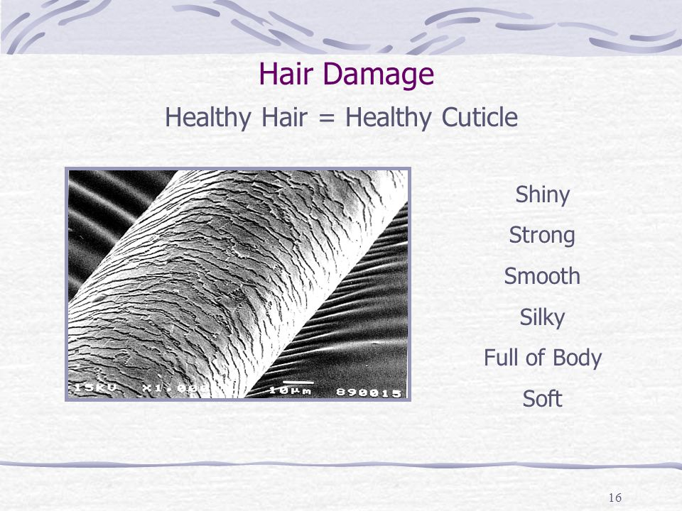 16 Healthy Hair = Healthy Cuticle Shiny Strong Smooth Silky Full of Body Soft Hair Damage