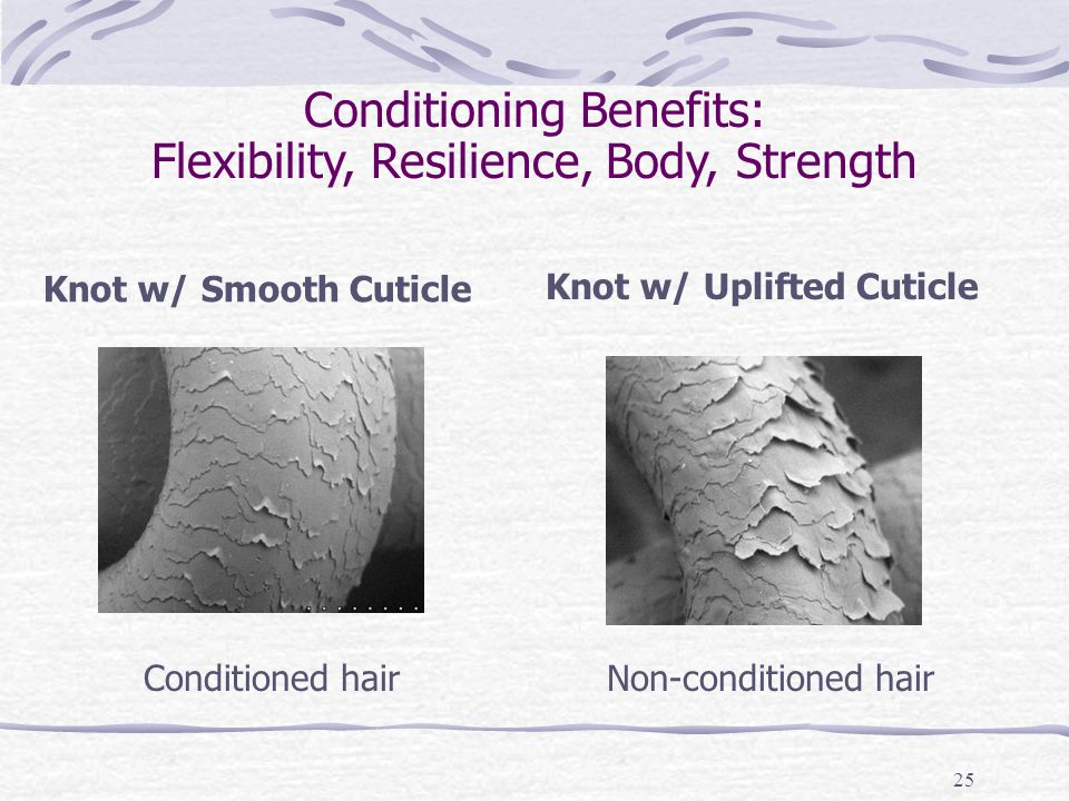 25 Conditioning Benefits: Flexibility, Resilience, Body, Strength Knot w/ Smooth Cuticle Knot w/ Uplifted Cuticle Conditioned hairNon-conditioned hair