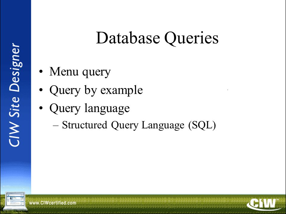 Database Queries Menu query Query by example Query language –Structured Query Language (SQL)
