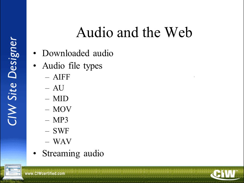 Audio and the Web Downloaded audio Audio file types –AIFF –AU –MID –MOV –MP3 –SWF –WAV Streaming audio