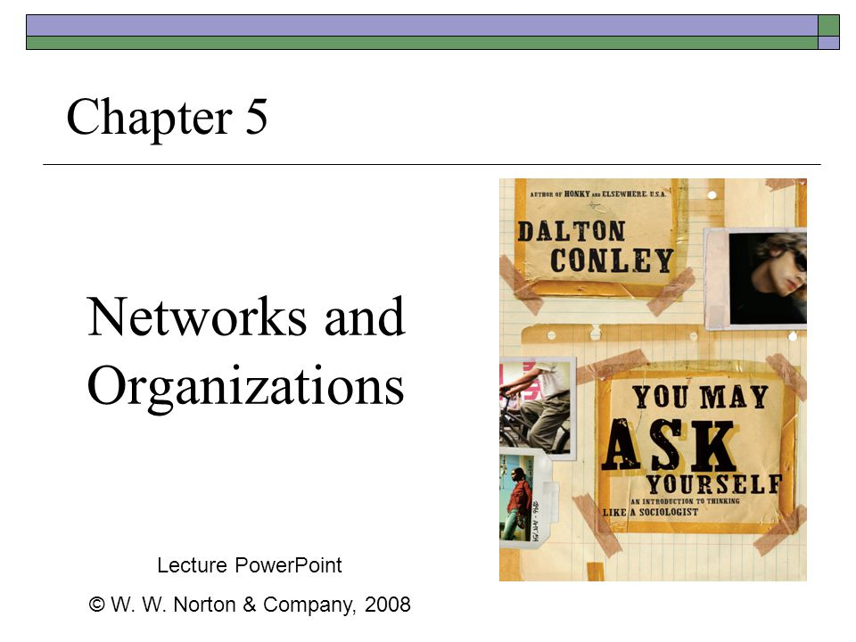 Networks and Organizations Chapter 5 Lecture PowerPoint © W. W. Norton & Company, 2008