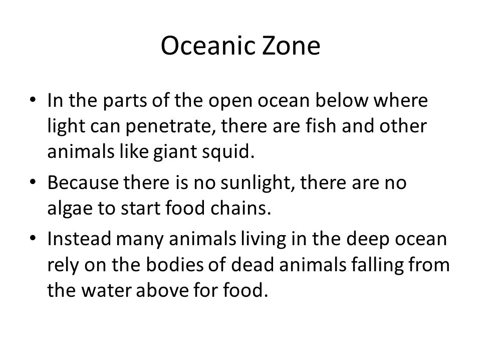 Oceanic Zone In the parts of the open ocean below where light can penetrate, there are fish and other animals like giant squid. Because there is no su