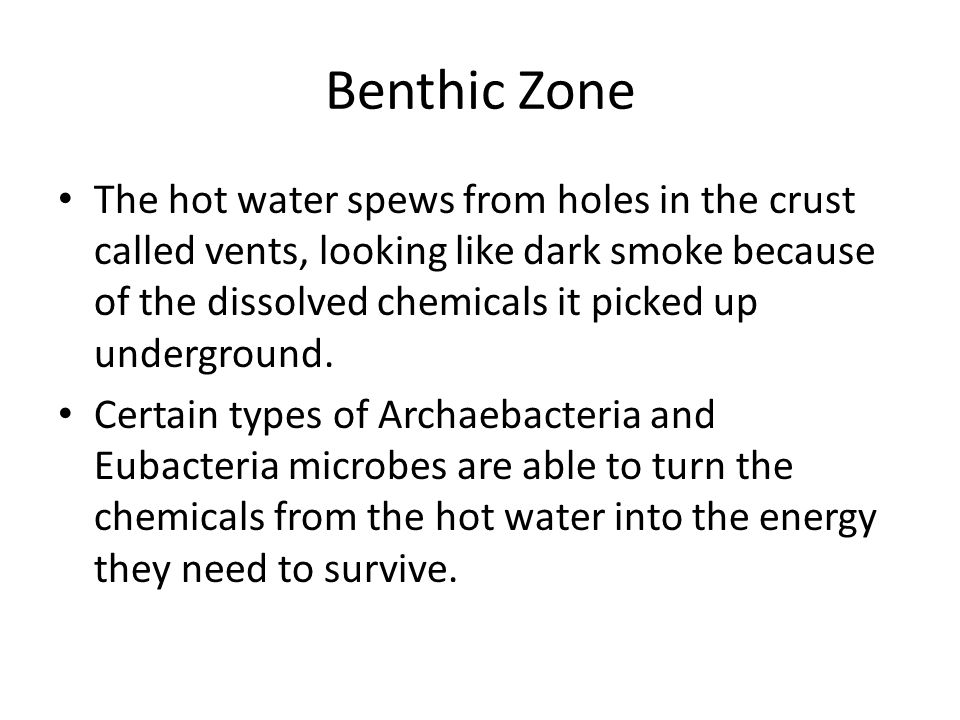 Benthic Zone The hot water spews from holes in the crust called vents, looking like dark smoke because of the dissolved chemicals it picked up undergr
