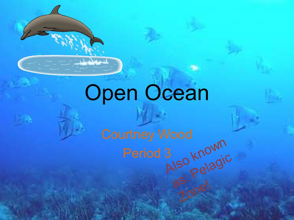 Open Ocean Courtney Wood Period 3 Also known as: Pelagic Zone ...