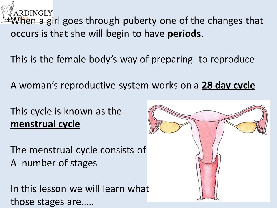 When a girl goes through puberty one of the changes that occurs is that she will begin to have periods.