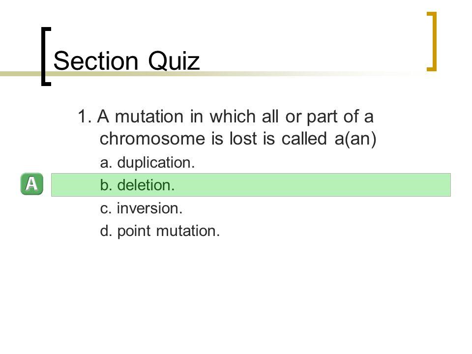 Section Quiz 1. A mutation in which all or part of a chromosome is lost is called a(an) a.