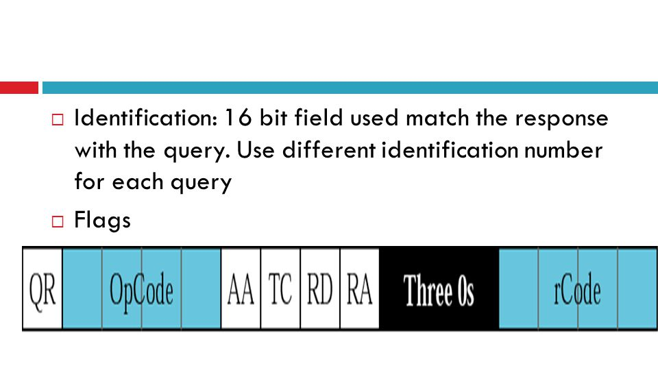  Identification: 16 bit field used match the response with the query.