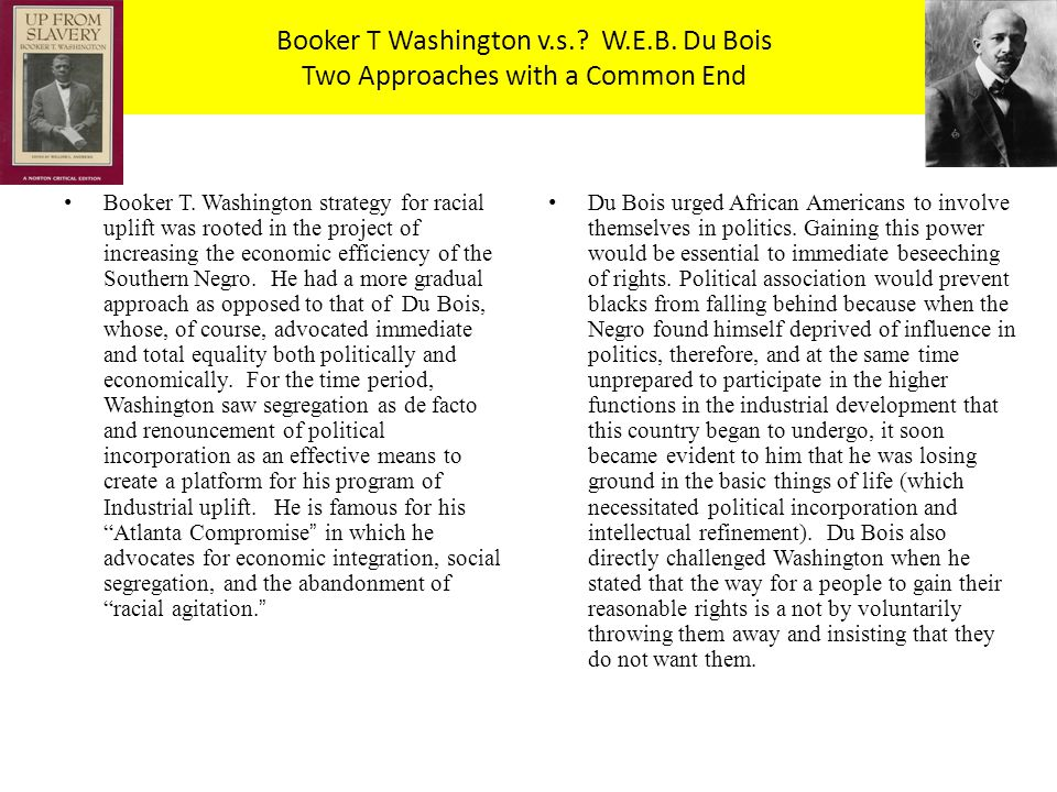 w e b dubois essay w e b dubois essay gxart similarities and  web dubois essaysdifferences between booker t washington and web dubois essay booker t washington v s w e b