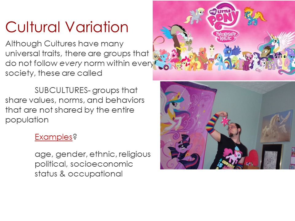 Cultural Variation Although Cultures have many universal traits, there are groups that do not follow every norm within every society, these are called SUBCULTURES- groups that share values, norms, and behaviors that are not shared by the entire population ExamplesExamples.