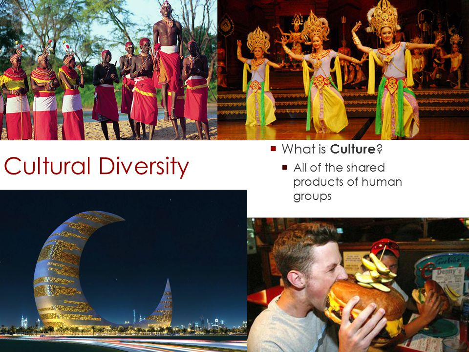 Cultural Diversity  What is Culture  All of the shared products of human groups