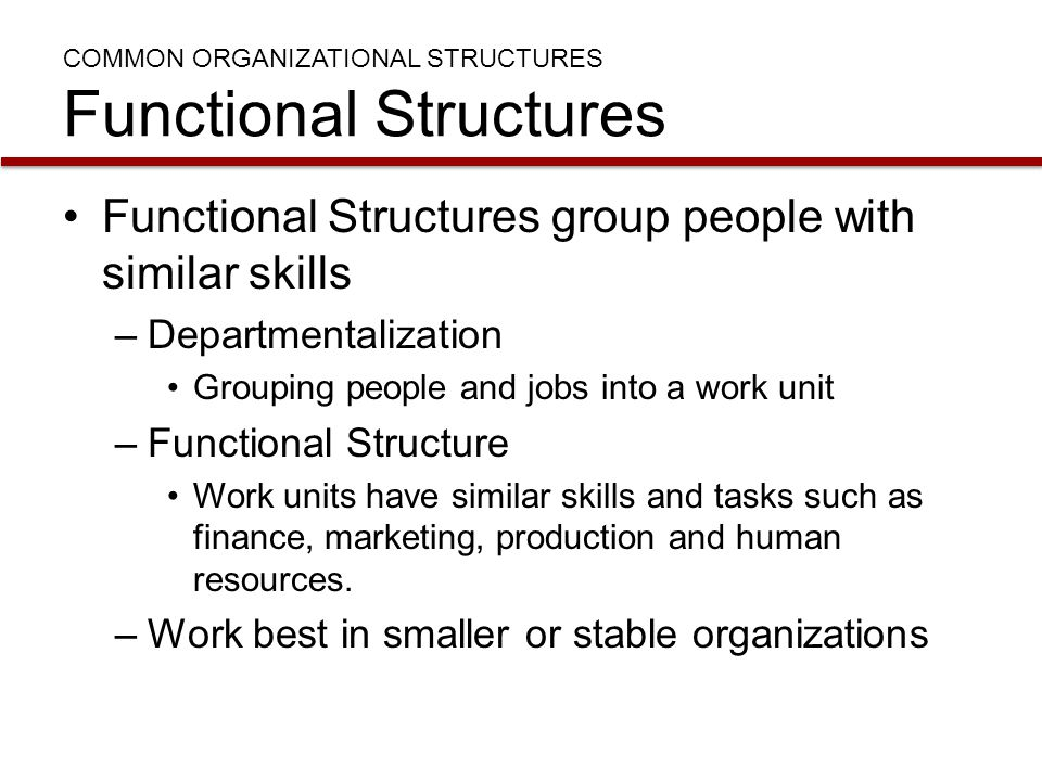 COMMON ORGANIZATIONAL STRUCTURES Functional Structures Functional Structures group people with similar skills –Departmentalization Grouping people and