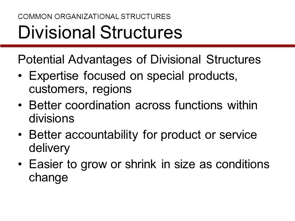 COMMON ORGANIZATIONAL STRUCTURES Divisional Structures Potential Advantages of Divisional Structures Expertise focused on special products, customers,