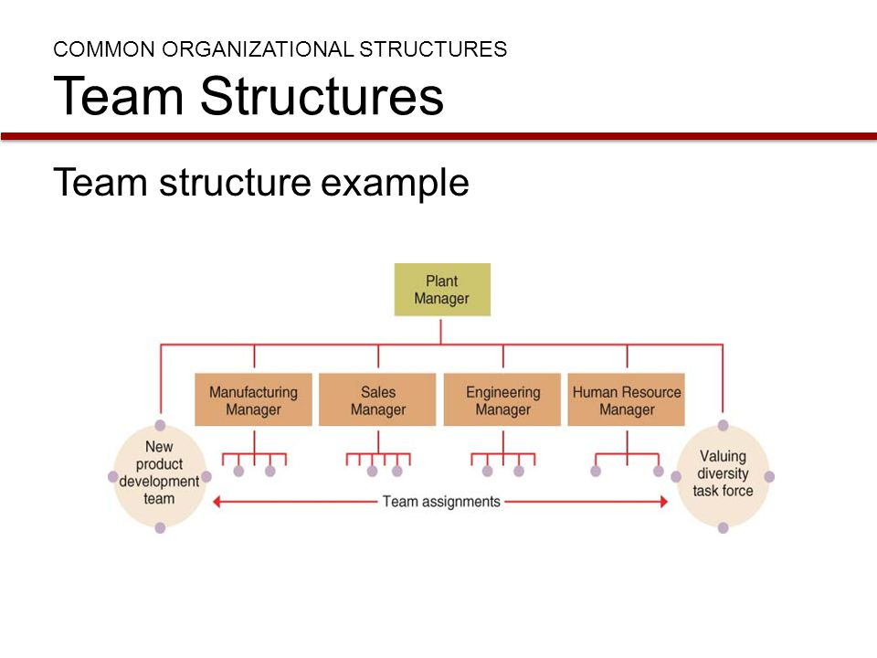 COMMON ORGANIZATIONAL STRUCTURES Team Structures Team structure example