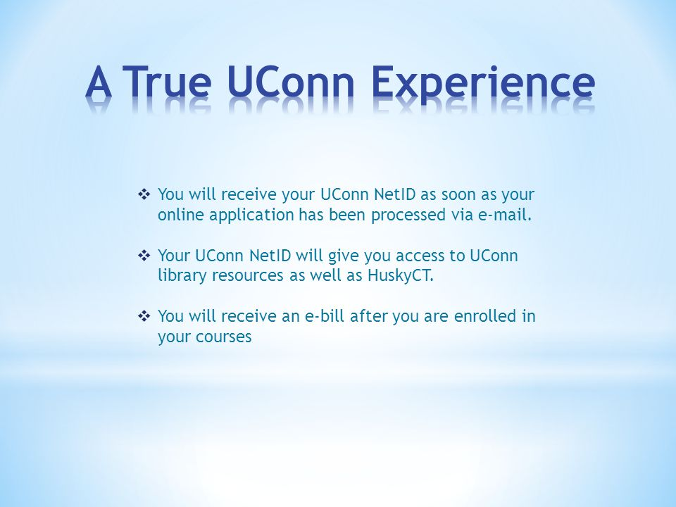  You will receive your UConn NetID as soon as your online application has been processed via  .