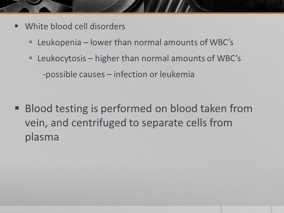  White blood cell disorders  Leukopenia – lower than normal amounts of WBC's  Leukocytosis – higher than normal amounts of WBC's -possible causes – infection or leukemia  Blood testing is performed on blood taken from vein, and centrifuged to separate cells from plasma