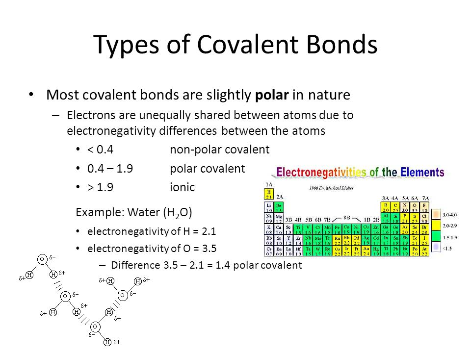 Covalent Bonding Objectives 1 Describe The Characteristics Of A