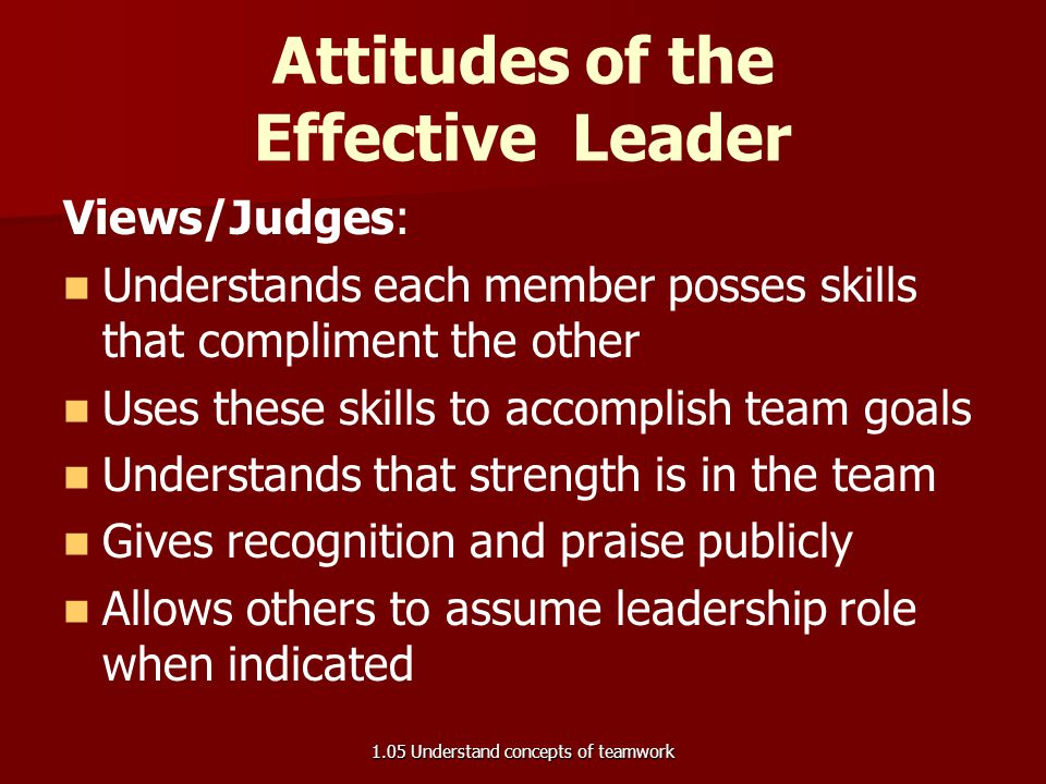 Attitudes of the Effective Leader Views/Judges: Understands each member posses skills that compliment the other Uses these skills to accomplish team g