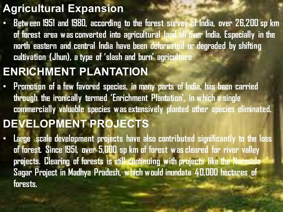 Agricultural Expansion Between 1951 and 1980, according to the forest survey of India, over 26,200 sp km of forest area was converted into agricultural land all over India.
