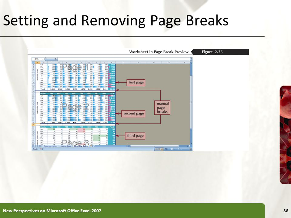 XP New Perspectives on Microsoft Office Excel Setting and Removing Page Breaks