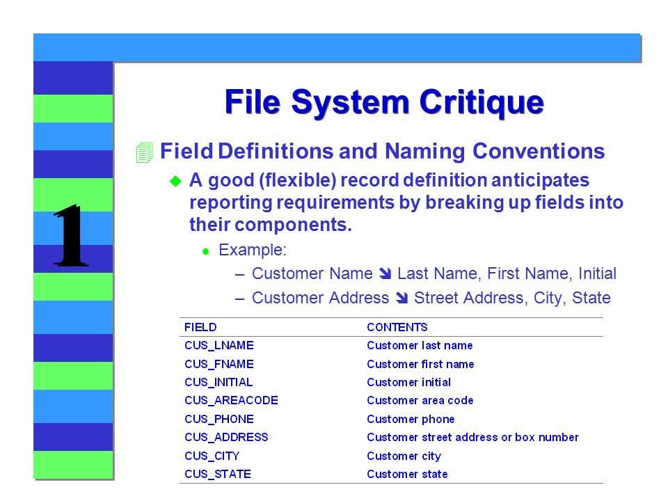 1 1 File System Critique 4Field Definitions and Naming Conventions u A good (flexible) record definition anticipates reporting requirements by breaking up fields into their components.