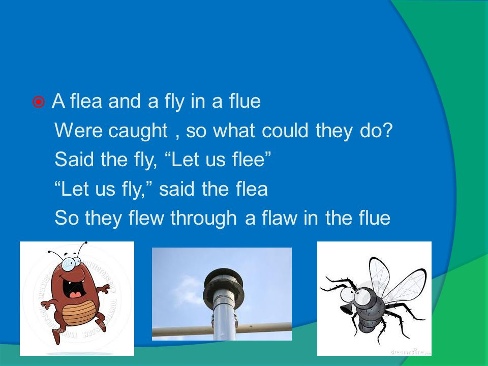  A flea and a fly in a flue Were caught, so what could they do.