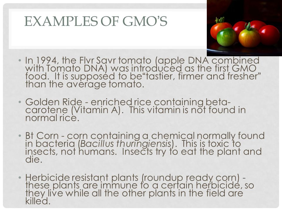 examples of gmo