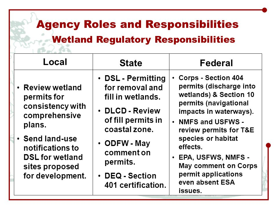 Agency Roles and Responsibilities Local StateFederal Review wetland permits for consistency with comprehensive plans.