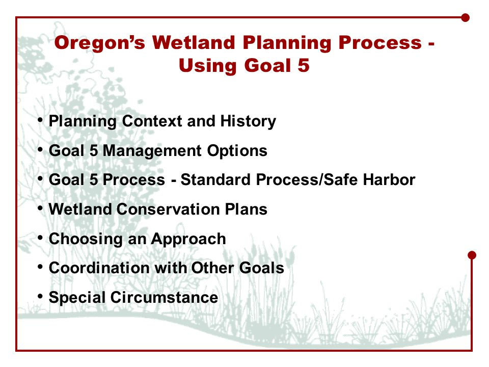 Oregon's Wetland Planning Process - Using Goal 5 Planning Context and History Goal 5 Management Options Goal 5 Process - Standard Process/Safe Harbor Wetland Conservation Plans Choosing an Approach Coordination with Other Goals Special Circumstance