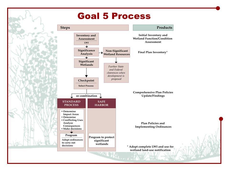 Goal 5 Process