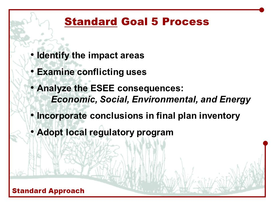 Standard Goal 5 Process Identify the impact areas Examine conflicting uses Analyze the ESEE consequences: Economic, Social, Environmental, and Energy Incorporate conclusions in final plan inventory Adopt local regulatory program Standard Approach