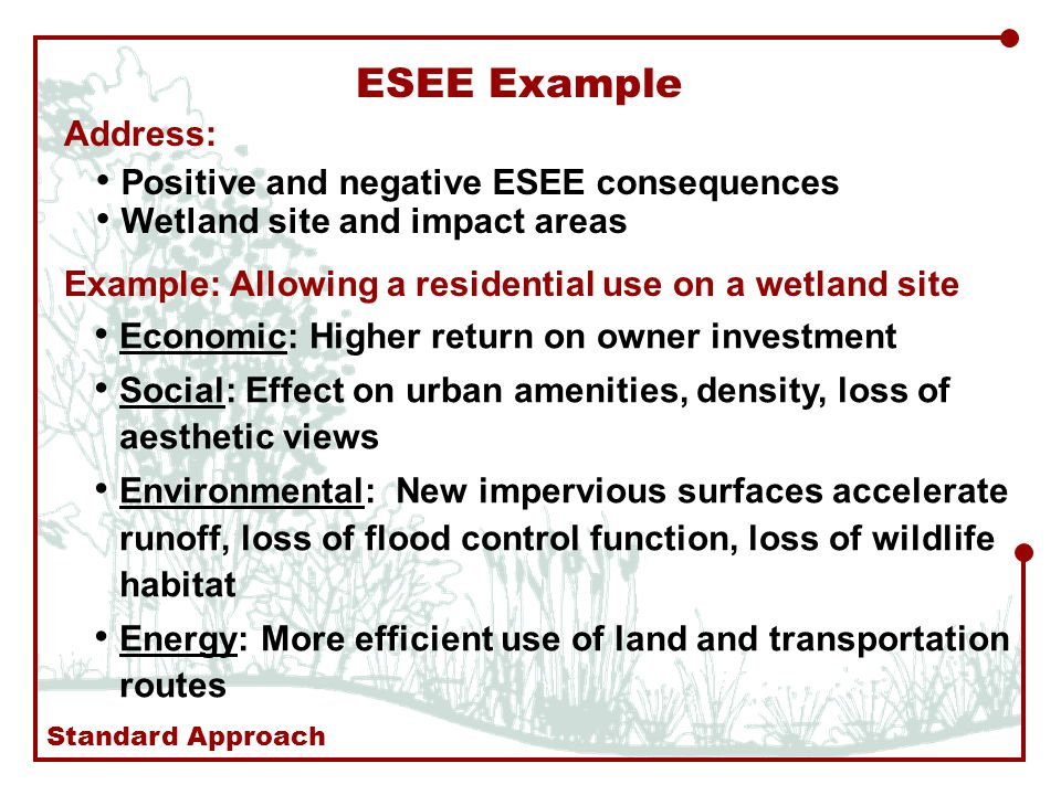 ESEE Example Address: Positive and negative ESEE consequences Wetland site and impact areas Example: Allowing a residential use on a wetland site Economic: Higher return on owner investment Social: Effect on urban amenities, density, loss of aesthetic views Environmental: New impervious surfaces accelerate runoff, loss of flood control function, loss of wildlife habitat Energy: More efficient use of land and transportation routes Standard Approach