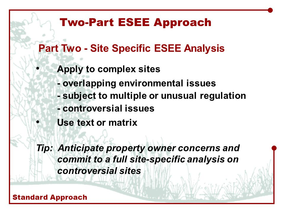 Two-Part ESEE Approach Part Two - Site Specific ESEE Analysis Apply to complex sites - overlapping environmental issues - subject to multiple or unusual regulation - controversial issues Use text or matrix Tip: Anticipate property owner concerns and commit to a full site-specific analysis on controversial sites Standard Approach