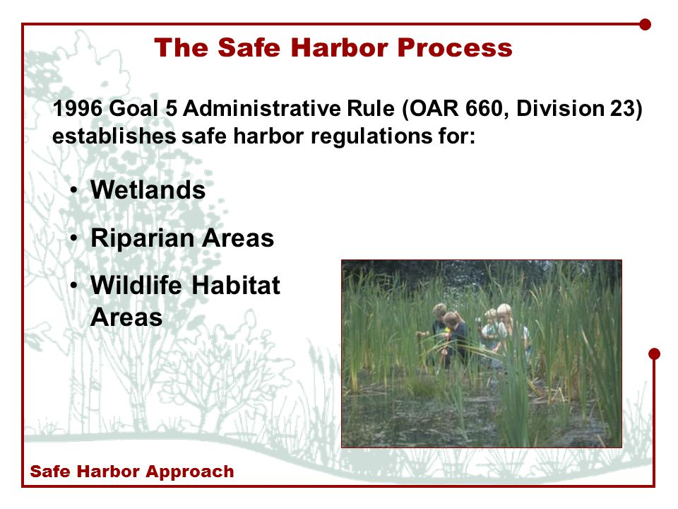 The Safe Harbor Process 1996 Goal 5 Administrative Rule (OAR 660, Division 23) establishes safe harbor regulations for: Wetlands Riparian Areas Wildlife Habitat Areas Safe Harbor Approach