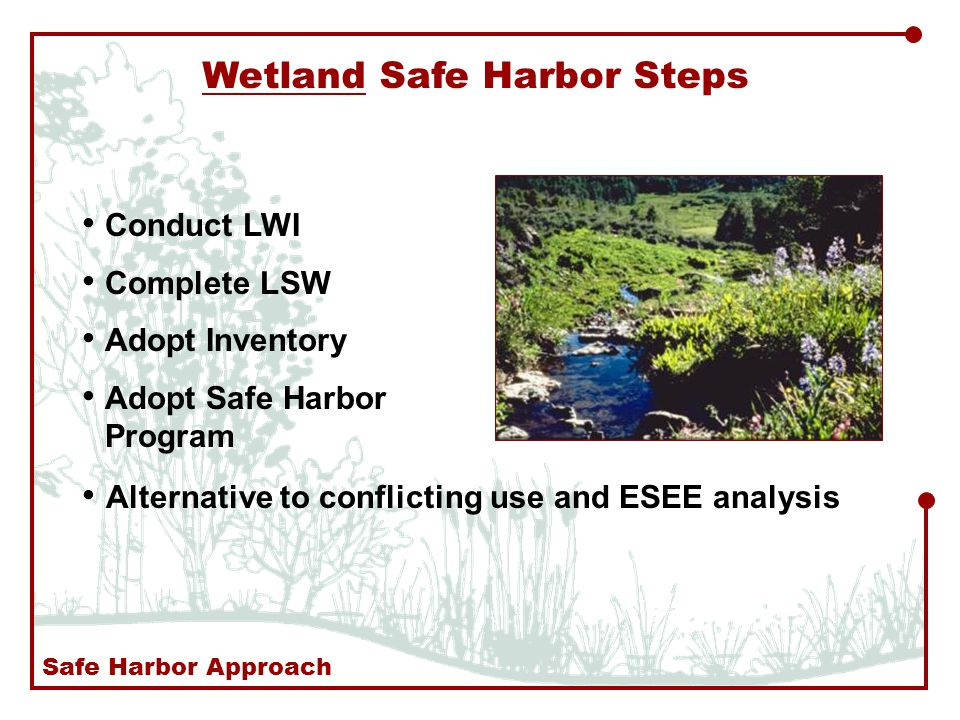 Wetland Safe Harbor Steps Conduct LWI Complete LSW Adopt Inventory Adopt Safe Harbor Program Alternative to conflicting use and ESEE analysis Safe Harbor Approach