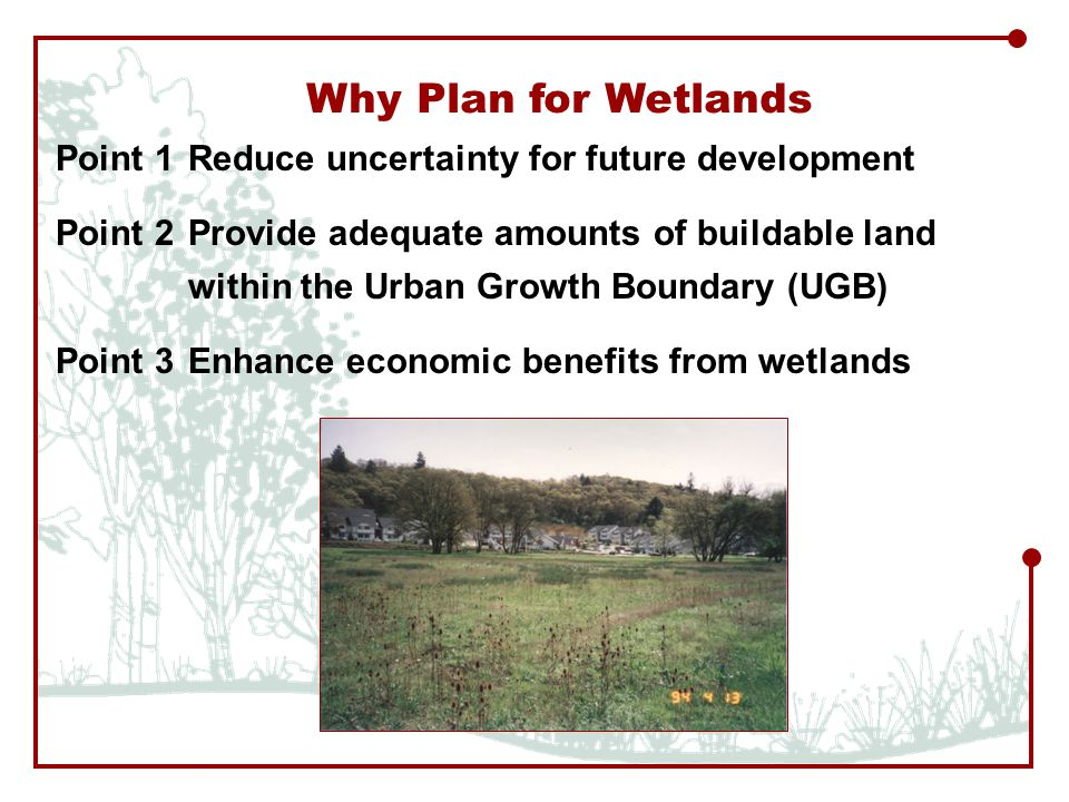 Point 1Reduce uncertainty for future development Point 2Provide adequate amounts of buildable land within the Urban Growth Boundary (UGB) Point 3Enhance economic benefits from wetlands Why Plan for Wetlands