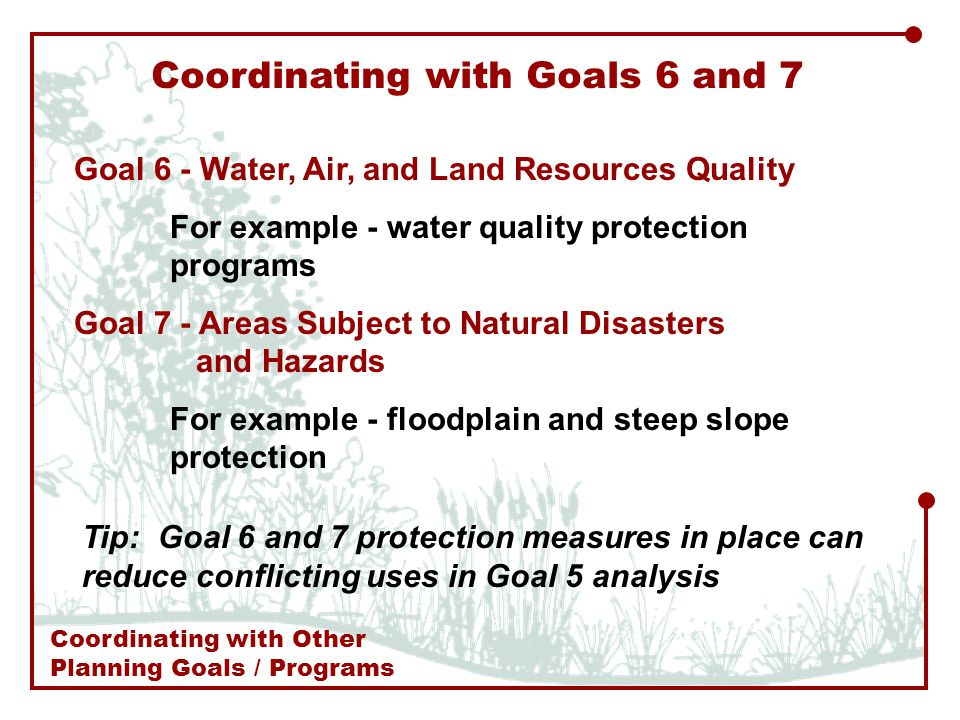 Goal 6 - Water, Air, and Land Resources Quality For example - water quality protection programs Goal 7 - Areas Subject to Natural Disasters and Hazards For example - floodplain and steep slope protection Coordinating with Goals 6 and 7 Tip: Goal 6 and 7 protection measures in place can reduce conflicting uses in Goal 5 analysis Coordinating with Other Planning Goals / Programs